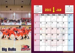 カレンダー2015卓上1月